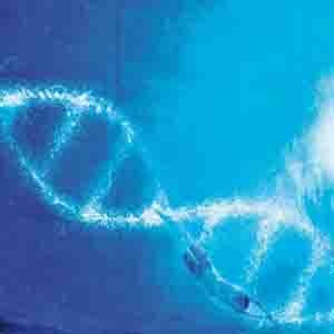 Our_Dna
